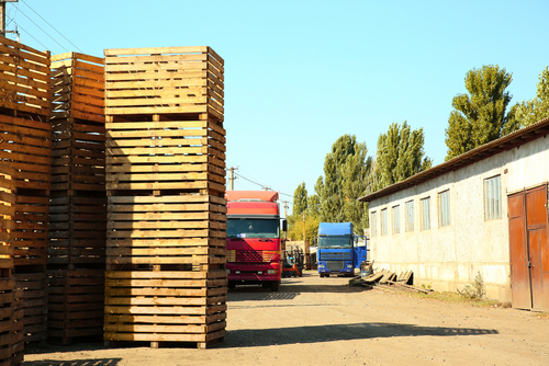 wooden crates for harvesting