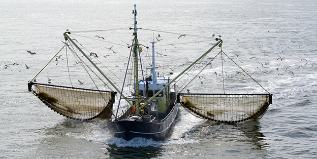fishing boat dragging nets through water
