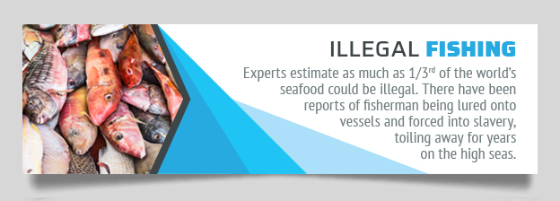 illegal fishing graphic