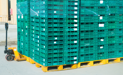 green plastic pallets