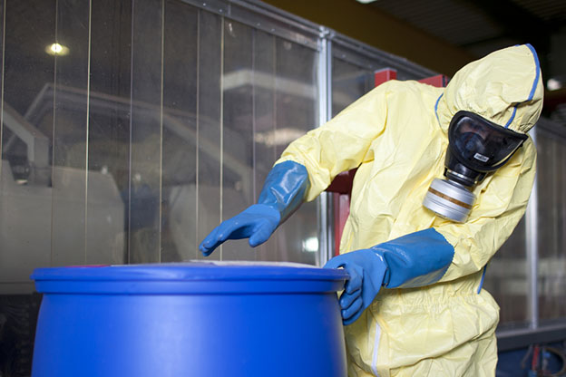 Experts disposing infested material