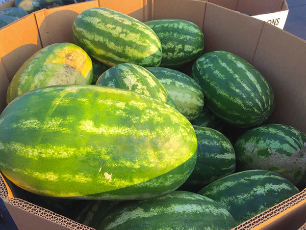 Watermelons in a box pallet